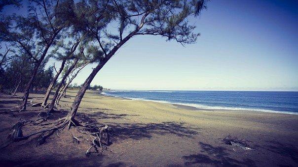 Les activités à privilégier lors de son séjour à la Réunion